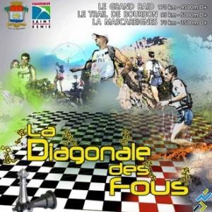 Affiche Diagonale 2013