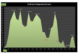 Profil Diagonale 2013