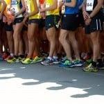En attendant 2014 : Les courses de cette fin d'année