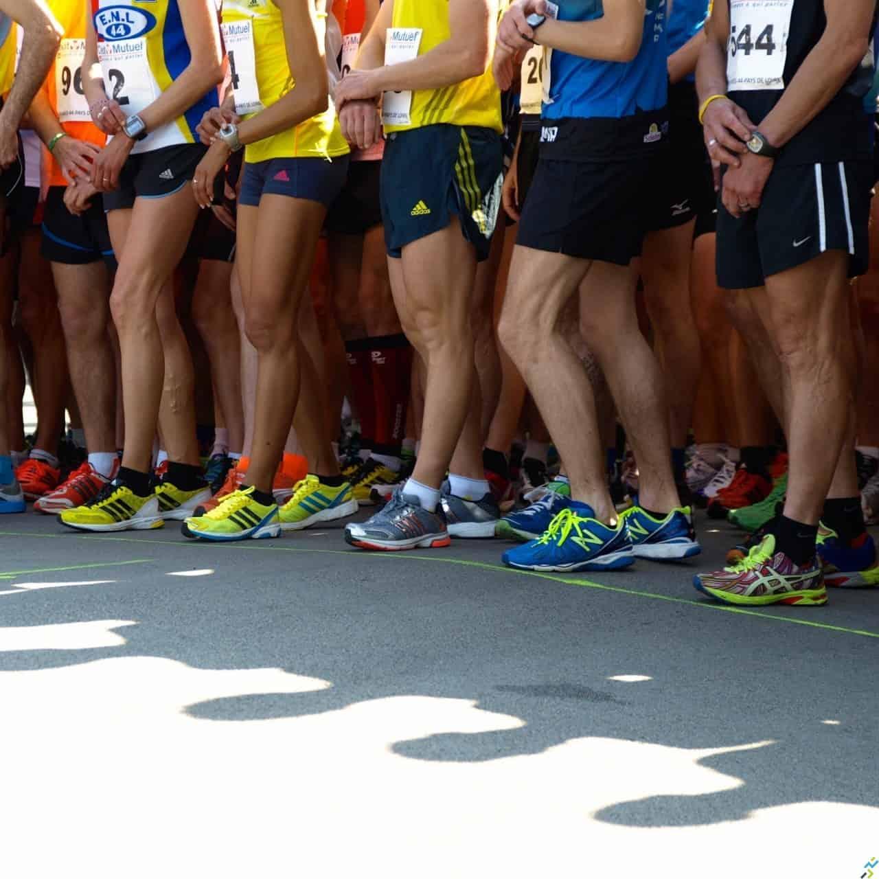 Courses fin 2013