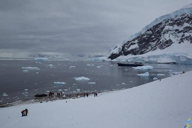 course a pied antarctique