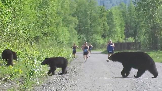 ours-triathlon-alaska - 1