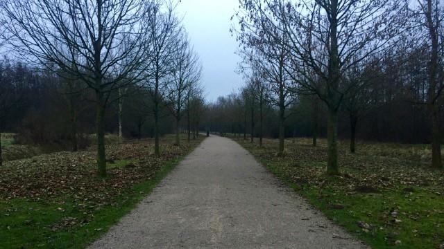 parc_deule (1)