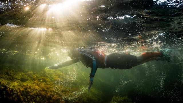 swimrun-tout-savoir-sur-la-discipline